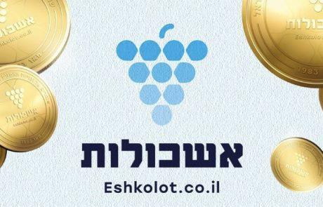 אמני ישראל – הכסף שלכם מחכה לכם